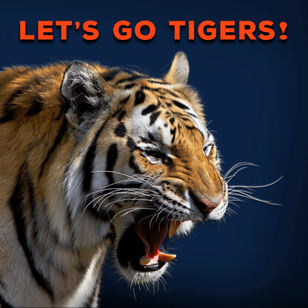 Lets-Go-Tigers